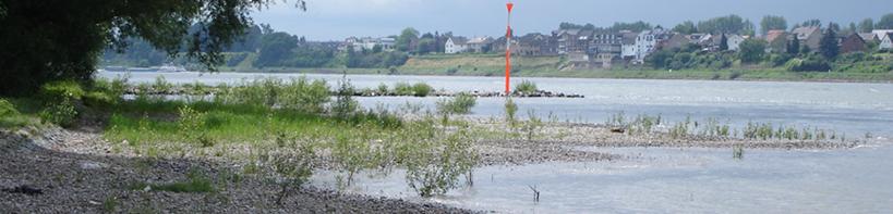 Rheinfischereigenossenschaft NRW